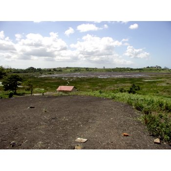 Pitch Lake (Trinidad) 01